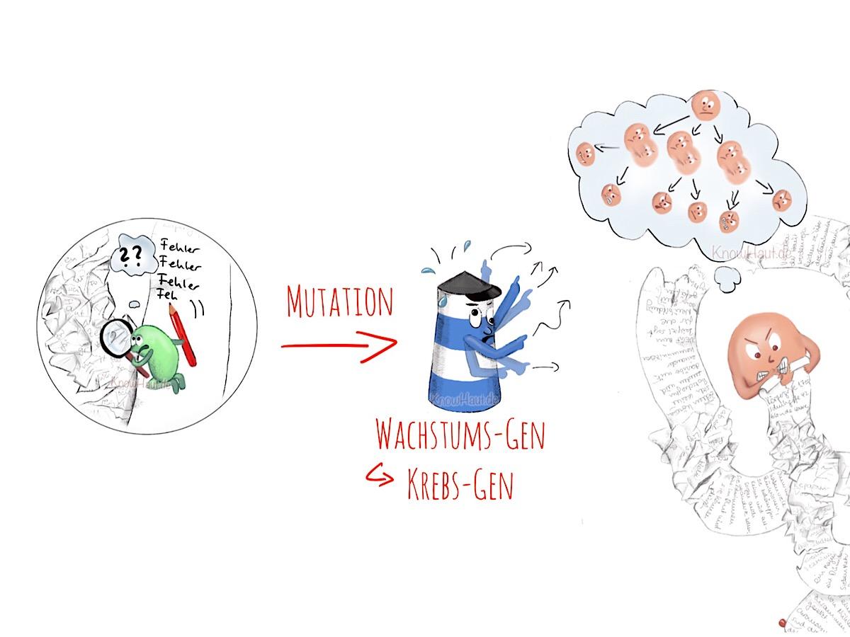 'gain of function' Onkogen, Mutationen lösen Hautkrebs aus