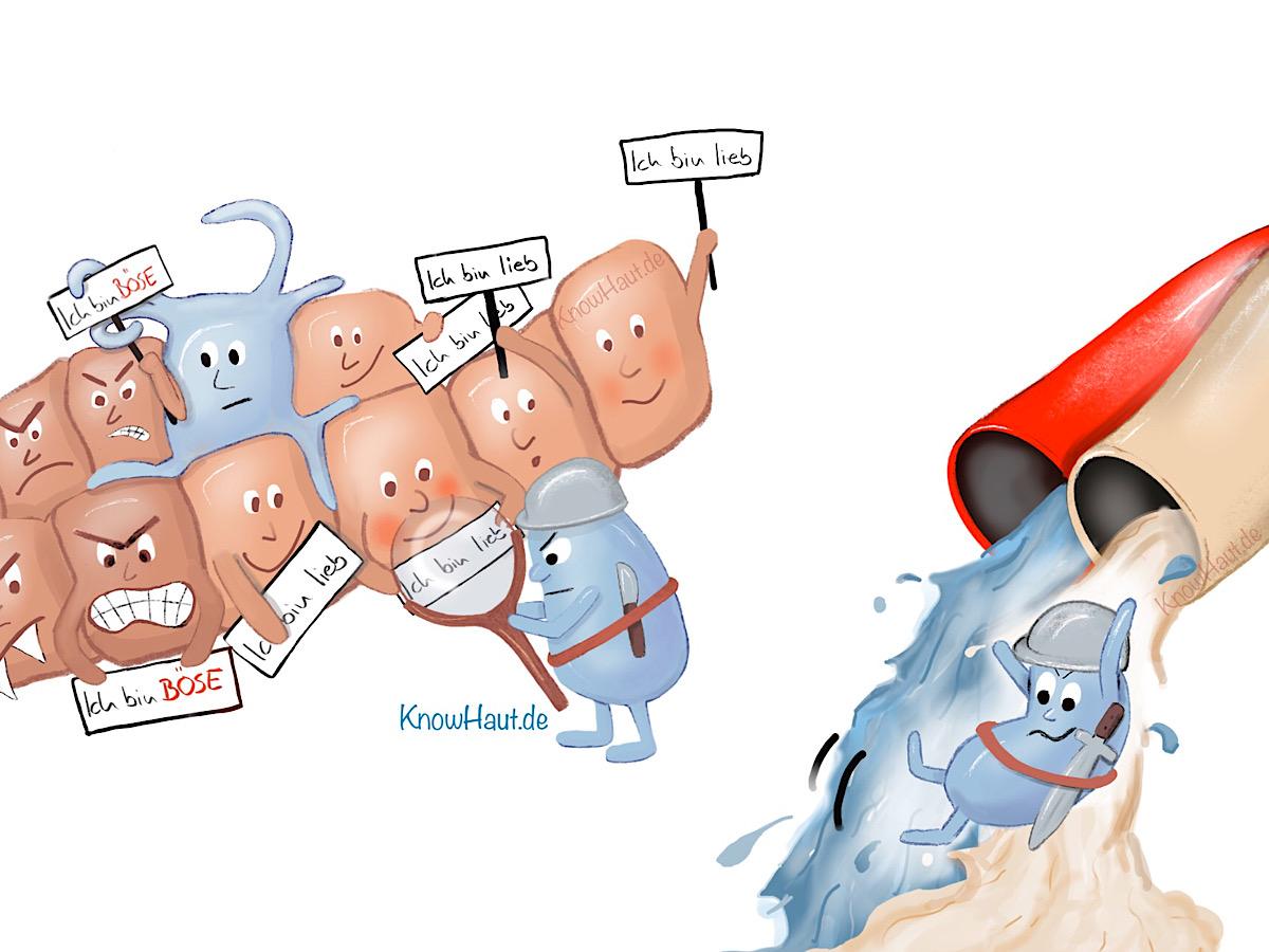Immunzellen patrouillieren durchs Gewebe